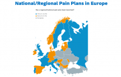 A European survey was conducted in 2019 to look at the status of national pain guidelines and action plans and to reflect on the status of policies supporting the updated priorities of the Societal Impact of Pain platform.