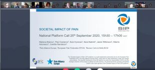 The SIP National Platform call took place on 25th September 2020