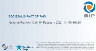 The next SIP National Platform call will take place on the 8th of February 2021