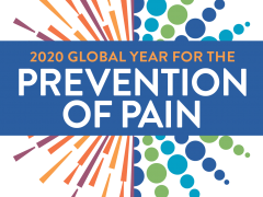 "This year is the IASP ""2020 Global Year for Prevention of Pain"", where the theme focuses on disseminating pain prevention strategies to researchers, clinicians, and patients. SIP has contributed in the last 10 years to the prevention of pain by:"