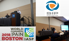 The IASP World Congress on Pain featured a special session devoted to the advocacy efforts of the IASP and its various regions, which gave us the opportunity to showcase the SIP project. IASP, the sister organisation of EFIC (the IASP European chapters), have a role to play in improving pain medicine globally via political action. One of the most important projects of IASP has been its efforts to push for the WHO International Classification of Diseases (ICD) to include 'chronic primary pain' as a disease in the next update, ICD-11. Inclusion of chronic primary pain in ICD-11 could lead to a sea-change in which healthcare systems pay more attention to pain, starting with an increase in the reporting of patients with pain as a primary indication. At the session in Boston on the 15th September, IASP and its regions presented their advocacy work and their efforts to push for the implementation of ICD-11. EFIC presented a section of the agenda which focuses on the SIP platform and the SIP partners' efforts to draw attention to ICD-11. Speakers included Professors' Bart Morlion and Thomas Tölle who presented the achievements of SIP to date at national and European level and provided example of how SIP has been a vehicle for advocacy of the ICD 11 uptake in Europe. The EFIC leadership was joined by MEP Marian Harkin, a great supporter of the SIP platform and Brain Mind and Pain interest group in the European Parliament. Harkin spoke about the importance of activities like ours in providing policy makers with the much-needed evidence to foster pain policies in a crowded health agenda. Finally, Dr Paul Cameron presented his cutting -edge work on pain classification and service delivery for the Scottish government. The session sparked interest in the SIP methodology beyond Europe as demonstrated by the very lively Q&A session that followed the SIP panel presentation.